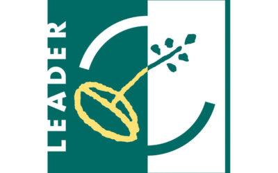 Befragung der Lokalen Aktionsgruppen der LEADER-Regionen in Hessen